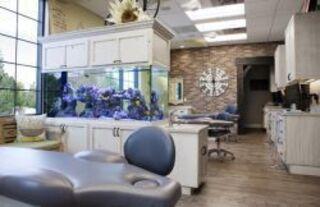 Стоматологические клиники – победители конкурса на лучший дизайн ...